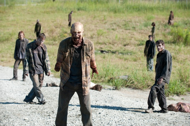 Picture from AMC's The Walking Dead